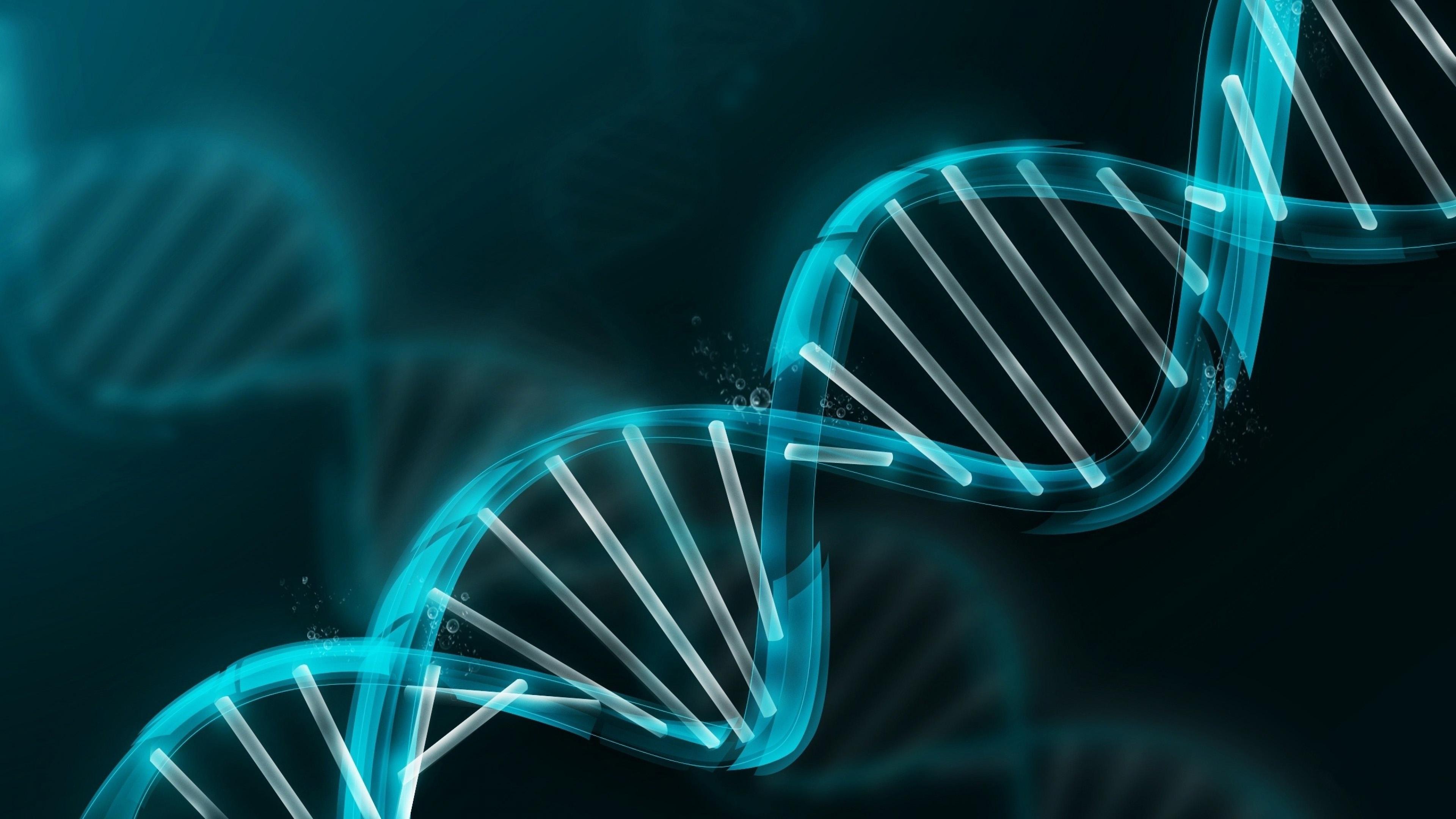 ДНК, свободные радикалы, здоровье